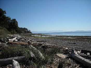 Comox Valley beach